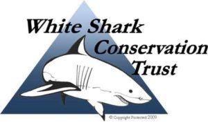 White shark conservation trust